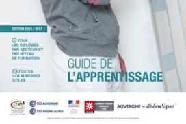 Toutes les formations en apprentissage dans la région Auvergne Rhône-Alpes !