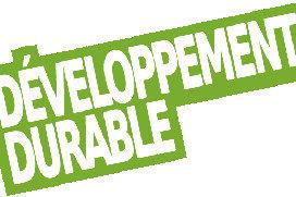 """Obtenir le titre """"Manager du Déploiement Opérationnel du Développement Durable"""" par VAE"""